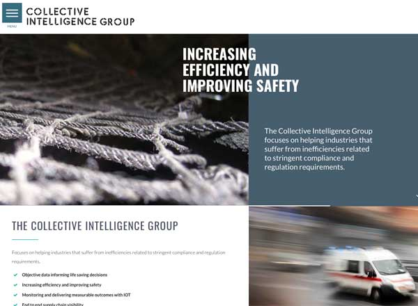 The Collective Intelligence Group